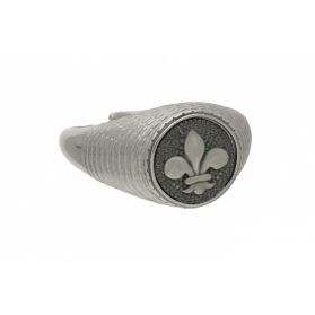 Sygnet srebrny z kolekcji Steelman numer NI-03-SY-silver Sezam - 1