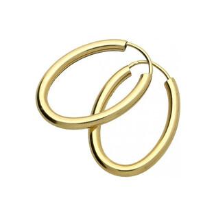 Kolczyki złote szarniry owalne nr AR 6704, Au 333